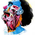 anatomy head MUS654 1